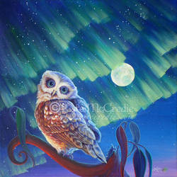 Aurora Owl by leelastarsky