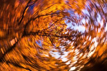 Autumnal Revolution by Jordan-Roberts