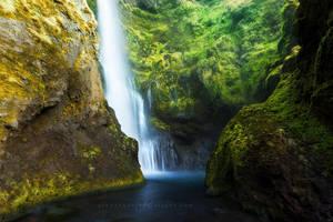 The Light Well by Jordan-Roberts
