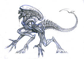 Xenomorph by Lythroversor