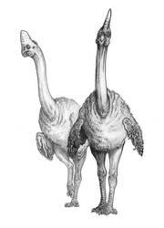 Corythoraptor by Lythroversor