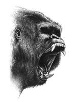 Gorilla by Lythroversor
