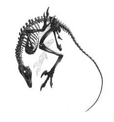 Bones (white version) by Lythroversor