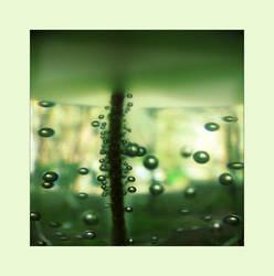 greenbbls by artyShock