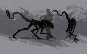 Alien 3 xenomorph by fastleppard