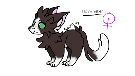 Haywhisker Ref by Spottedsoul