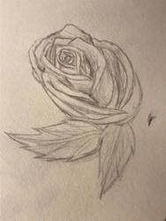 Every Rose has its Thorn by SpiritWolf3639
