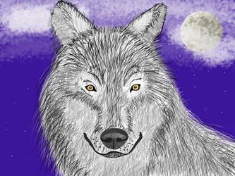 Wolf by lovelyHanibal