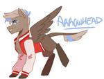 Arrowhead - Custom by CerealintheMilkyWay