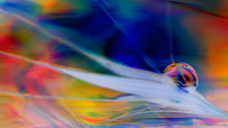 Psychedelic World by Phenix59