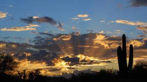 As The Dawn Breaks Background by Phenix59