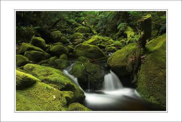 Just a little jungle stream by JiriStransky
