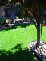 Backyard 10 by almostAMAZING