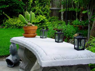 Backyard 11 by almostAMAZING