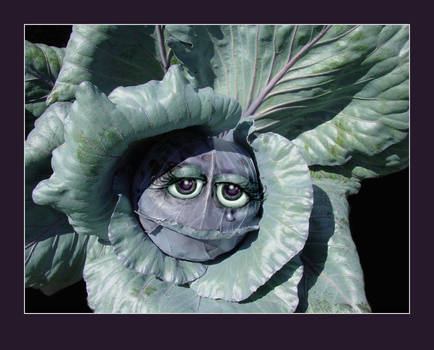 Emotional Cabbage by almostAMAZING