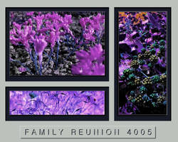 Family Reunion 4005 by almostAMAZING