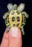 Mutant 2 Headed 5 Leg Turtle 2 by DETHCHEEZ