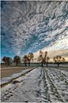 Winter landscape IV by Mommus