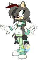Coal the Hedgehog .:Redesign:. by VeggieMadness