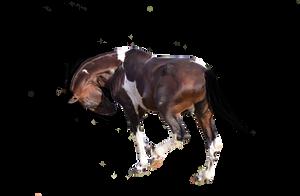 Precut/premade horse! by kentuckyhorseluv