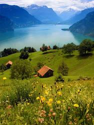 Swiss Farm on Lake Lucern by snak