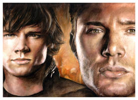 SPN - Brothers by Anna-Mariaa