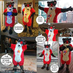 2013 Anthrocon Collage by PudgeyRedFox