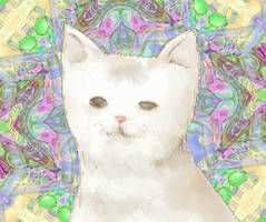 cat token:f.1670 by pigmhall