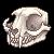 Pixel Cat Skull Facing Left by Asralore