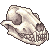 Dog Skull Facing Right by Asralore