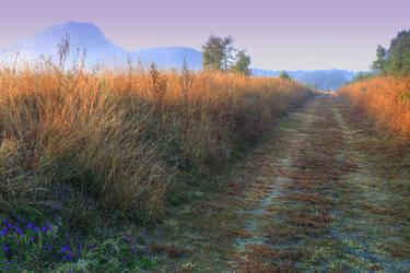 The Long Rail by WildWassa
