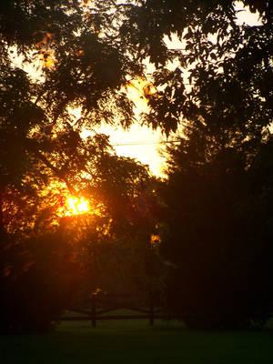 .:Virgina Sunset:. by Shadouge4eva