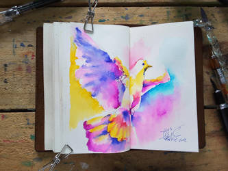 bird by TingChieh
