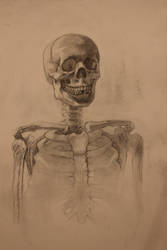 Selective Focus Skull by edwardaaronart