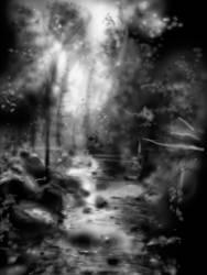 Forest by kentuski