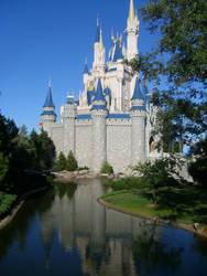 Reflection by DisneyDaleMunk