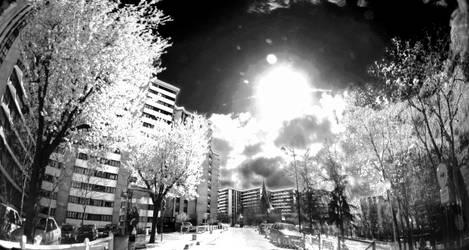Black white by binarymind