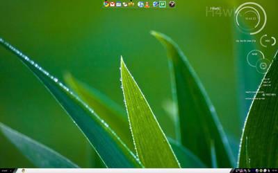 Desktop 23APR09 by belh4wk