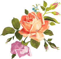 VECTOR ROSE PNG by LupishaGreyDesigns