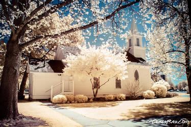 Boise in Infrared by vazagothic