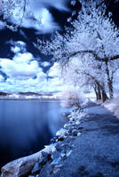 A walk by the lake IR by vazagothic