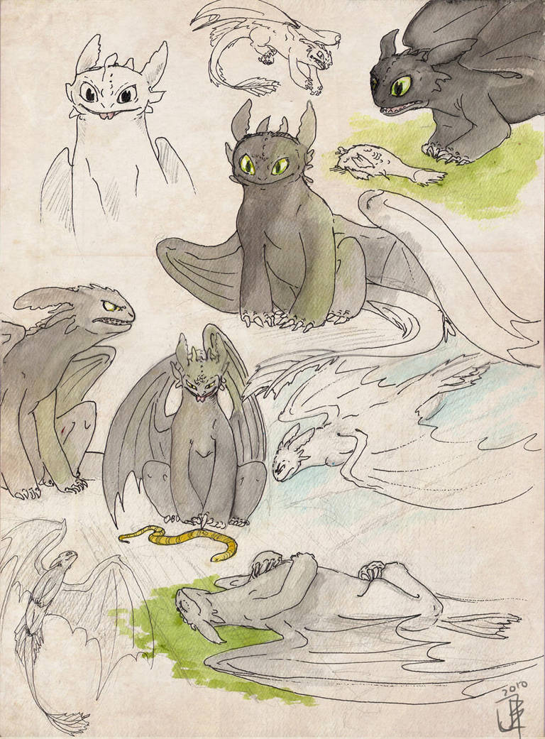 Toothless XD I just love how he can change from one thing to
