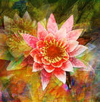Waterlily White by Tackon