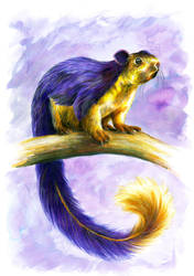 Indian Giant Squirrel by LuckyEd
