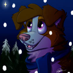 Christmas Denver Icon by Asp3ll