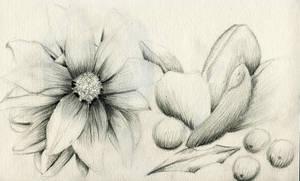 flowers by suuzz870
