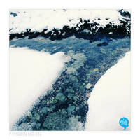 Norway_7 Frozen Lichen by 5-tab