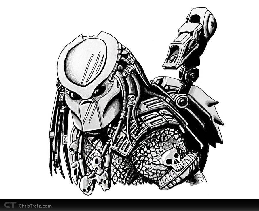 Predator Sketch by chris-illustrator