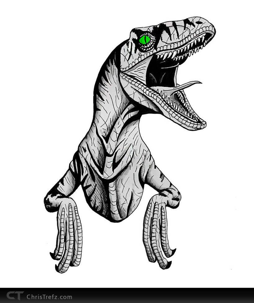 Raptor Sketch by chris-illustrator