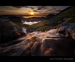 Golden Flow... by uberfischer